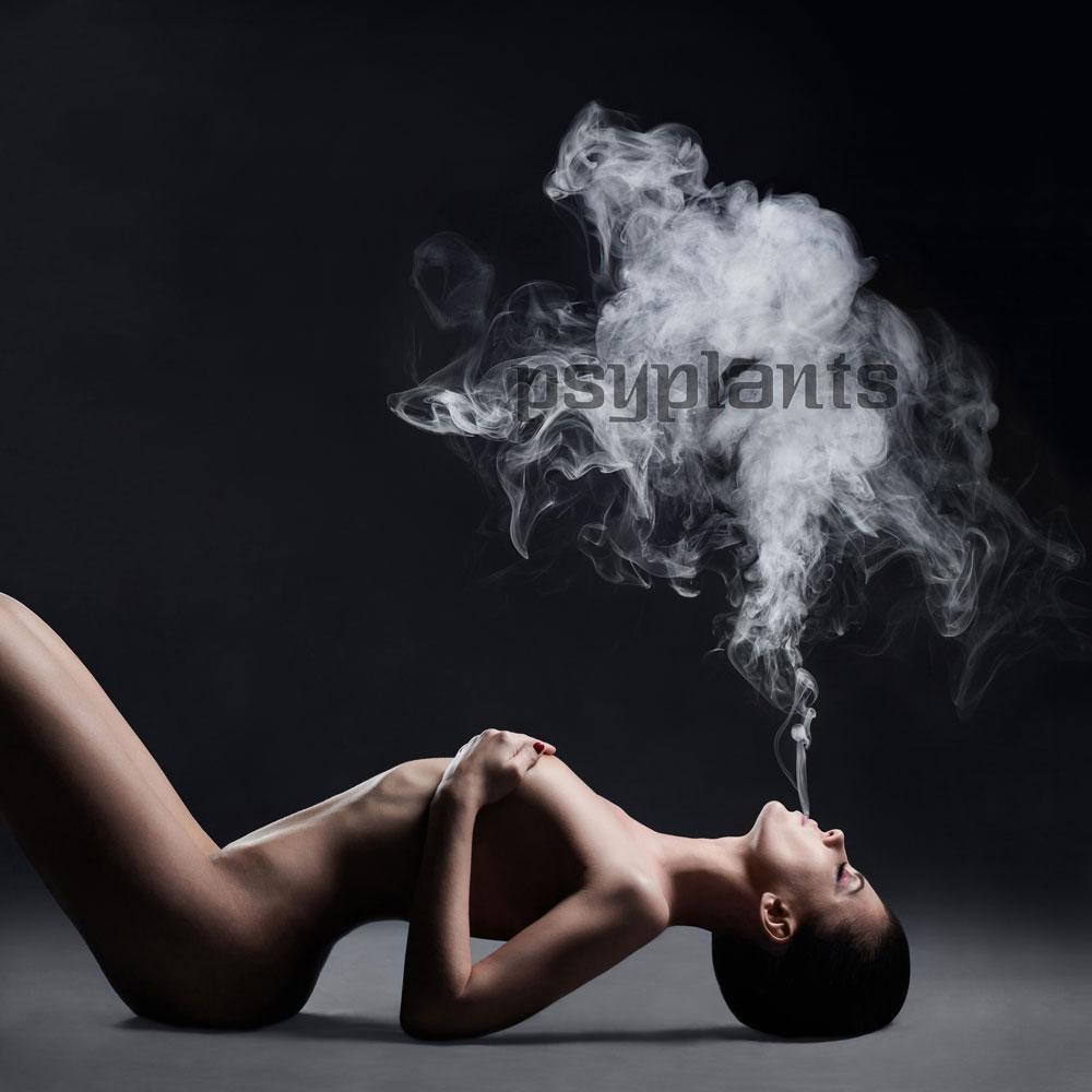 Фото секс в борьбе 16 фотография