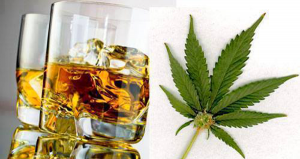 Alcohol-vs-Cannabis