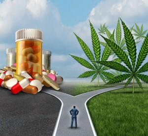 Marijuana-Medical-Choice