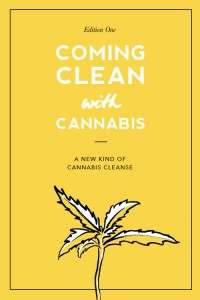 coming clean with cannabis