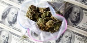 marijuana-bud-money