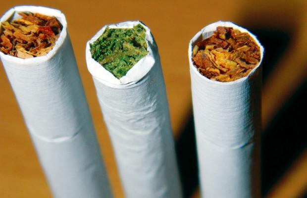 Конопля в сигарете выращивал коноплю калининград