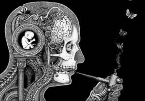 marijuana-brain