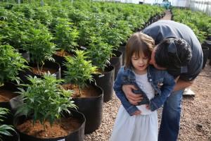 marihuana-i-deti