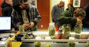 69% потребителей марихуаны мужчины