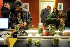 cannabis-magazin