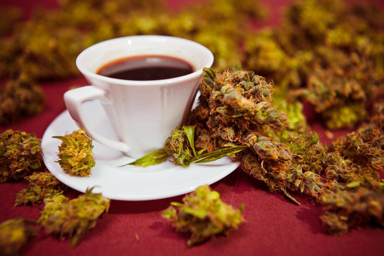 Что происходит, если совмещать кофе с марихуаной?