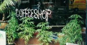 kofe-shop