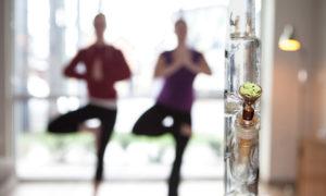 konoplia-i-yoga