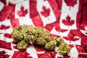 25% канадцев признались, что употребляют марихуану