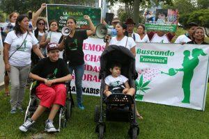 Перу легализовала медицинскую марихуану