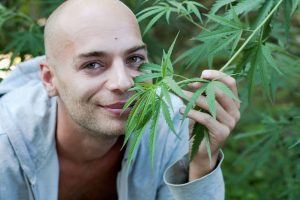 5 причин, почему марихуана - одно из лучших профилактических средств