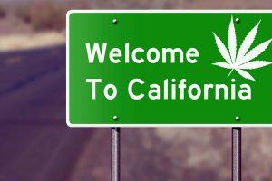 Калифорния узаконила марихуану в развлекательных целях