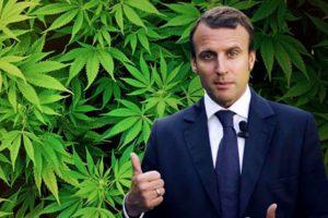 Франция смягчает наказание за употребление марихуаны