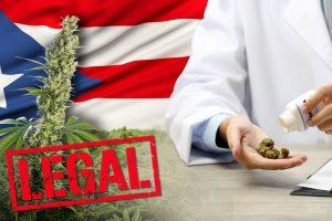 Пуэрто-Рико одобрил КБД после двухлетнего запрета