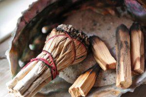 Насколько безопасна и почему употребляют сальвию