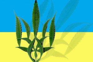 В Харькове состоится первая Международная конференция по медицинской марихуане