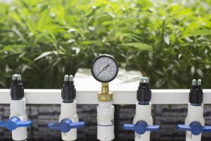 Автоматизации выращивания растений в домашних условиях