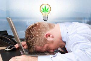 Как правильно употреблять марихуану, чтобы открыть в себе творчество
