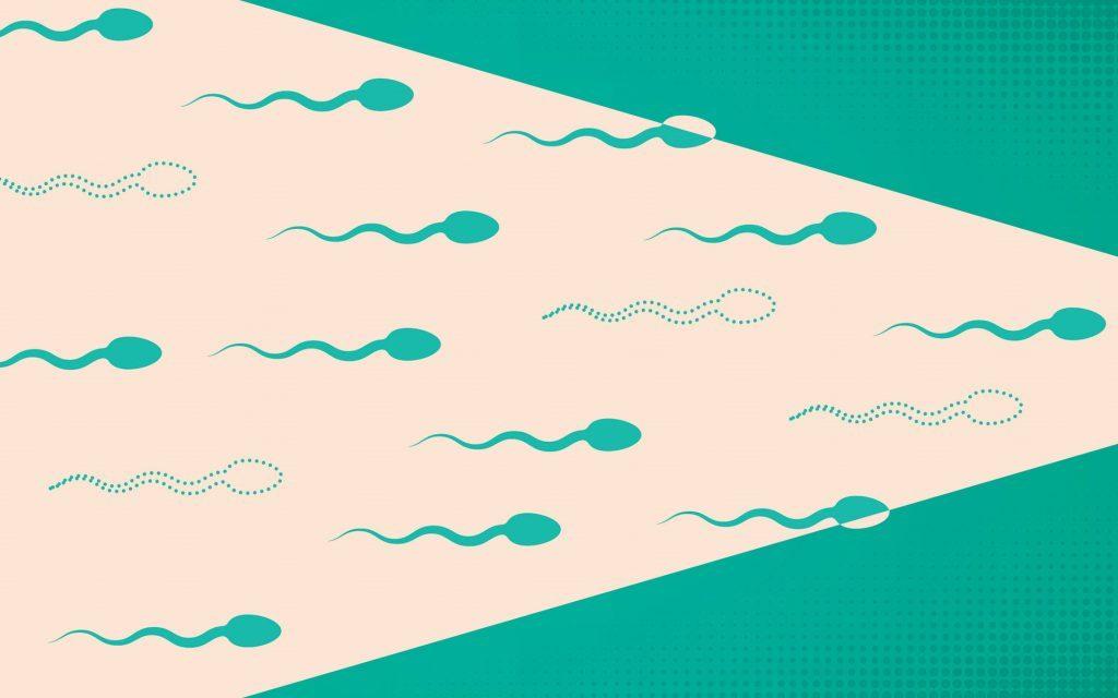 cannabis-and-sperm