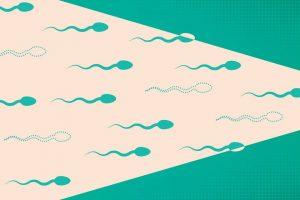 Обнаружена неожиданная зависимость между употреблением каннабиса и количеством сперматозоидов