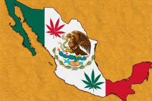 Победное шествие легализации. Мексика — уже этой осенью