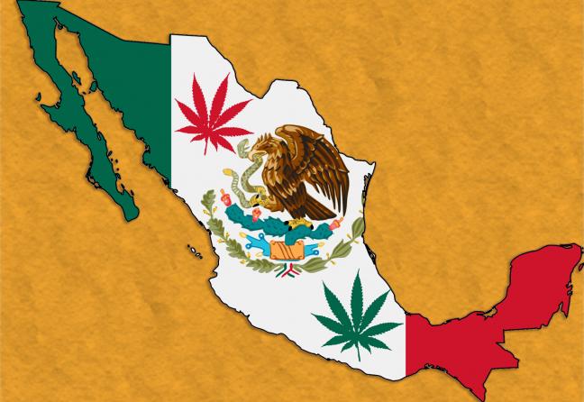 meksico_flag_map_cannabis