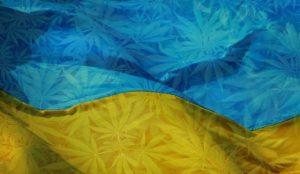флаг Украины с коноплей